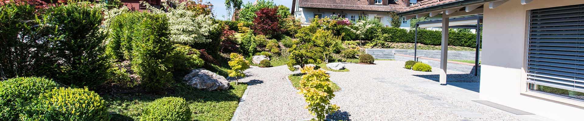 Gartenbau moderner Garten